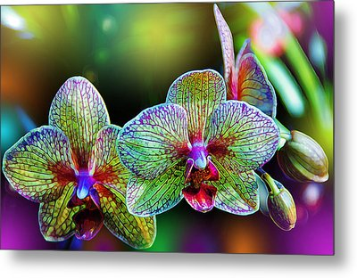 Alien Orchids Metal Print