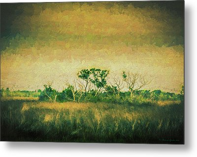 All Alone Metal Print by Marvin Spates