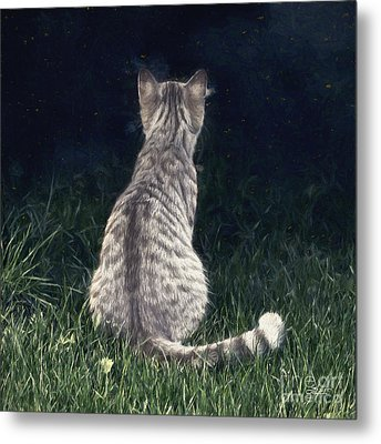 All Cats Are Gray By Night Metal Print by Jutta Maria Pusl