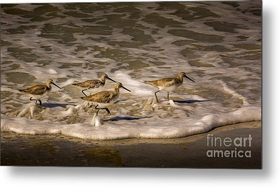 All Together Now Metal Print
