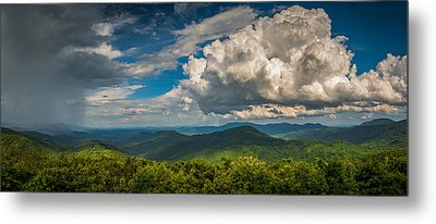 Metal Print featuring the photograph All Weather by Joye Ardyn Durham