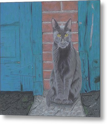 Metal Print featuring the drawing Alley Cat by Arlene Crafton