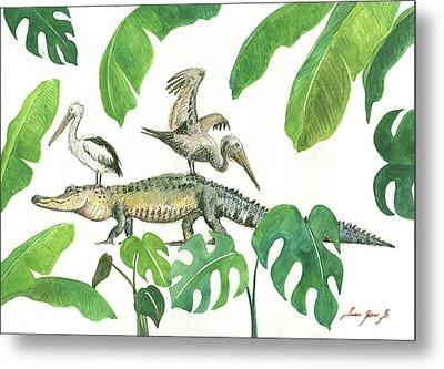 Alligator And Pelicans Metal Print by Juan Bosco