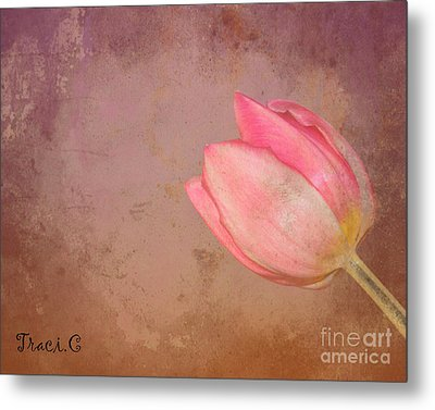 Metal Print featuring the photograph Allure by Traci Cottingham