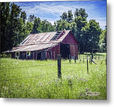 Almost Gone But Still Standing Metal Print by William Havle