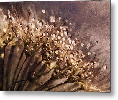 Almost Sepia Delicate Dandelions Metal Print