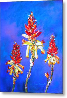 Metal Print featuring the painting Aloe Flower Spike by M Diane Bonaparte
