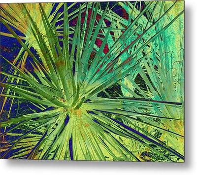 Aloe Vera Plant Metal Print by Susanne Van Hulst