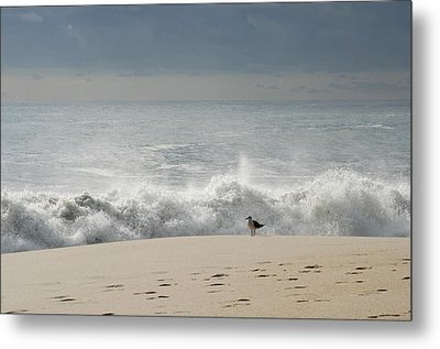 Alone - Jersey Shore Metal Print by Angie Tirado