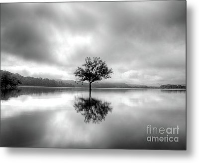 Metal Print featuring the photograph Alone Bw by Douglas Stucky