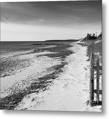 Metal Print featuring the photograph Alone by Michelle Wiarda