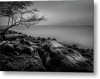 Alone On Spanish Banks Metal Print
