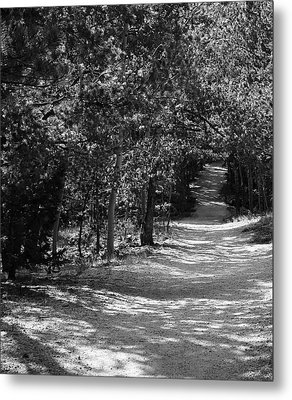 Metal Print featuring the photograph Along The Barr Trail by Christin Brodie
