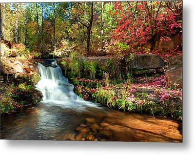 Metal Print featuring the photograph Along The Horton Trail by Anthony Citro
