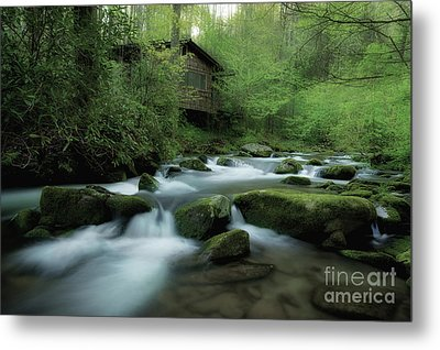 Along The Morning Stream Metal Print by Michael Eingle