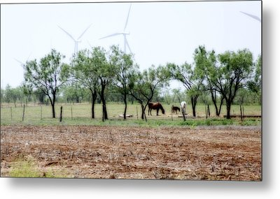 Along The Road Metal Print