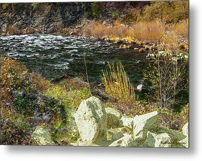 Along The Stream Metal Print