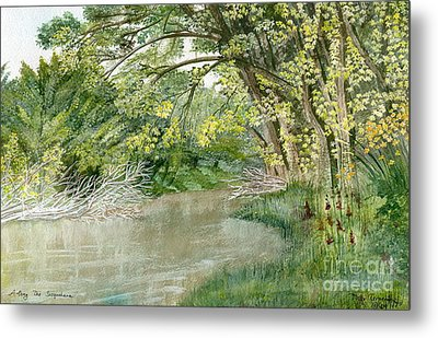 Metal Print featuring the painting Along The Susquehanna by Melly Terpening