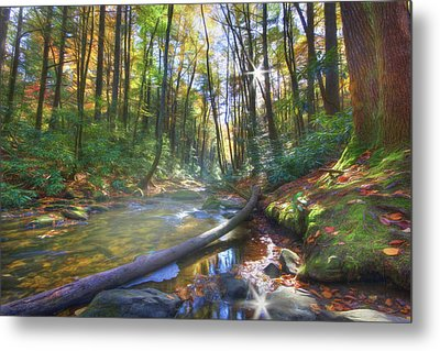 Metal Print featuring the digital art Along The Trail In Georgia by Sharon Batdorf