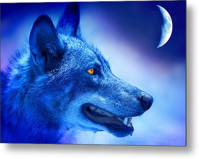 Alpha Wolf Metal Print by Mal Bray