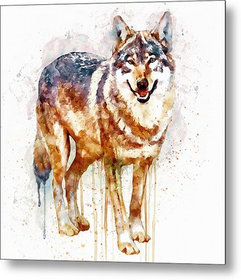 Alpha Wolf Metal Print by Marian Voicu