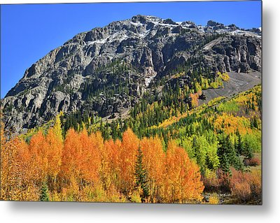 Metal Print featuring the photograph Alpine Loop Road Aspens by Ray Mathis