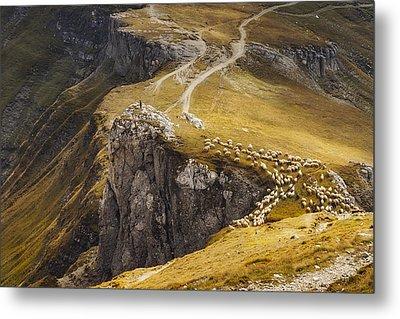 Alpine Pastures Metal Print