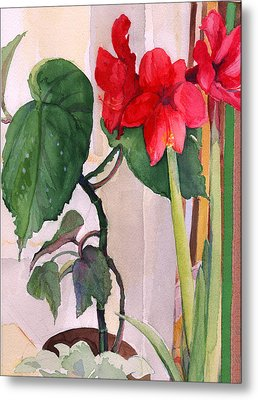 Amaryllis And Begonia Metal Print by Nancy Watson