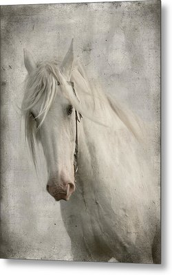 Amazing Grace Metal Print by Dorota Kudyba