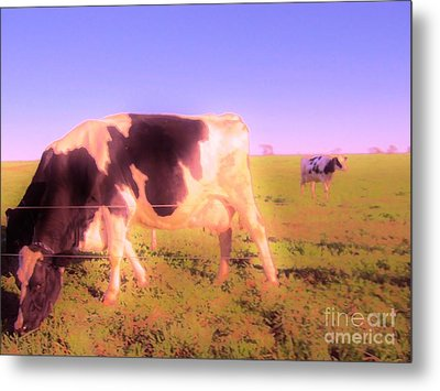 Metal Print featuring the photograph Amazing Graze by Susan Carella