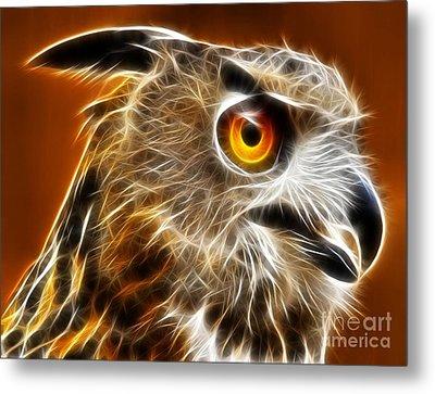 Amazing Owl Portrait Metal Print by Pamela Johnson