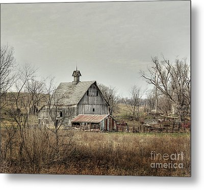 America Metal Print by Thomas Danilovich