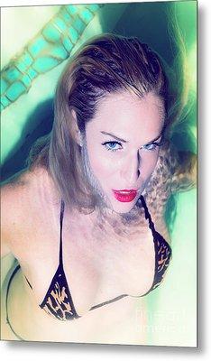 American Beauty No73-5837 Metal Print by Amyn Nasser