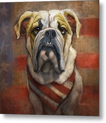 American Bulldog Metal Print by Sean ODaniels