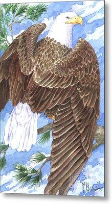 American Eagle Metal Print by Paul Brent