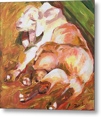 American Farm Sleepy Goats Metal Print by Trina Teele