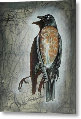 Metal Print featuring the mixed media American Robin by Sheri Howe
