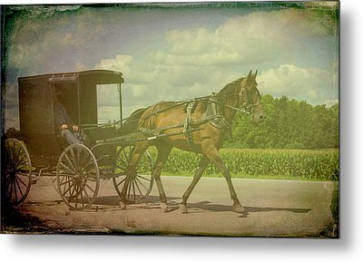 Amish Conveyance Color Metal Print
