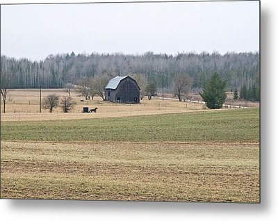 Metal Print featuring the photograph Amish Country 0754 by Michael Peychich