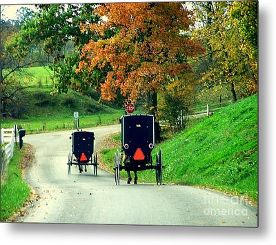 Amish Country In Autumn Ohio Holmes County Metal Print