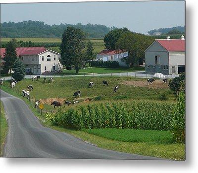 Amish Country Road Metal Print