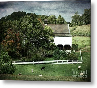 Amish Farm In The Fall With Textures Metal Print by Gena Weiser