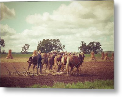 Metal Print featuring the photograph Amish Farming by Joel Witmeyer