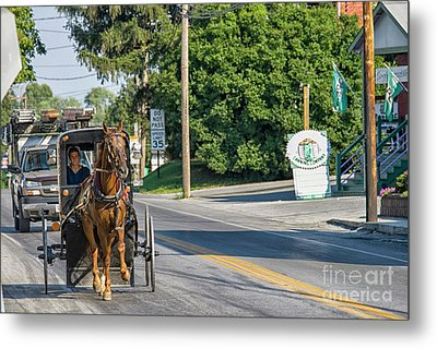 Metal Print featuring the photograph Amish Girl On The Road by Patricia Hofmeester