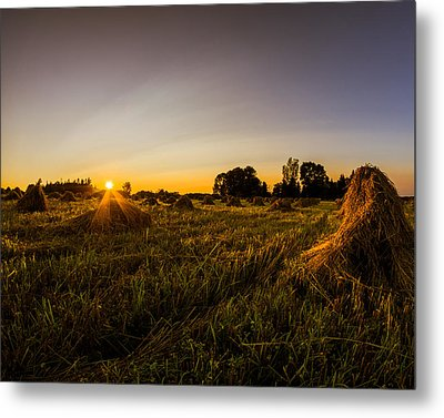 Metal Print featuring the photograph Amish Harvest by Chris Bordeleau