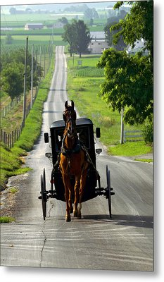 Amish Morning Commute Metal Print