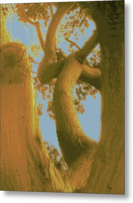 Among The Trees Metal Print