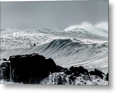 Amongst The Elements Metal Print by Sean Davey