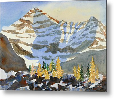 Amongst The Larches Metal Print by Mohamed Hirji
