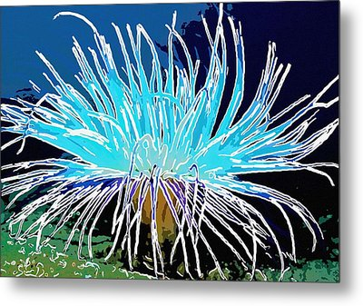 An Abstract Scene Of Sea Anemone 1 Metal Print by Lanjee Chee